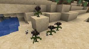 Minecraft Black Dye Explained