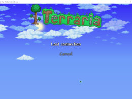 Terraria connection lost settings