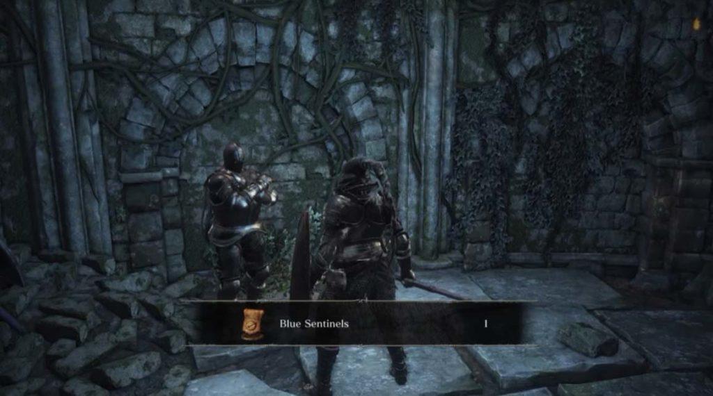 Dark Souls 3 Covenants Blue sentinels